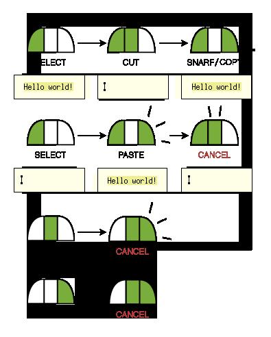 acme chord diagram